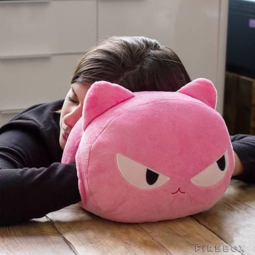 Cat Nap Cushions