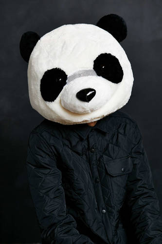 Giant Panda Head