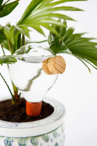 Waterworks - plant-watering system